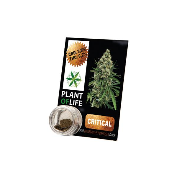 Plant of Life 3.8% Critical