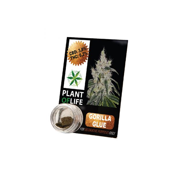 Plant of Life 3.8% Gorilla Glue